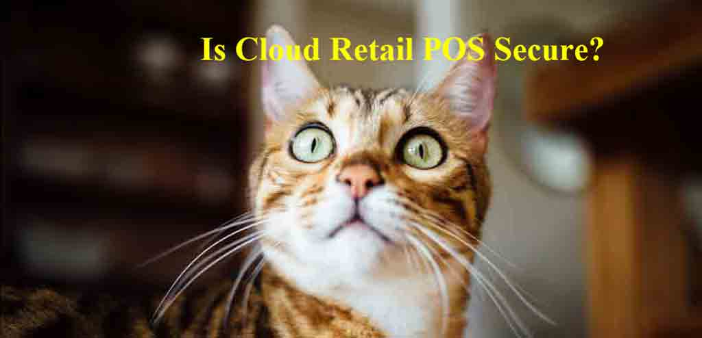 What is Cloud POS & How it Works Plus Other Related Questions